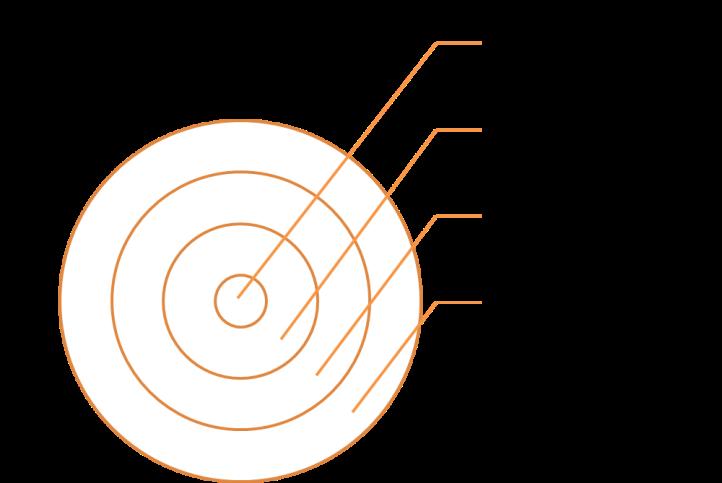 Onion Skin Model - adapted