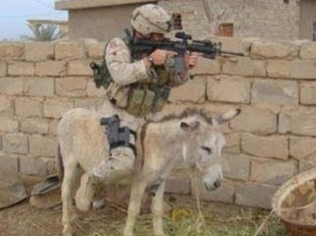Soldier on Donkey