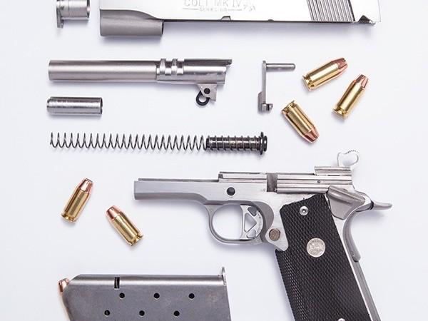 Dismantled Pistol