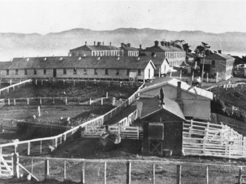 Historic WWI Internment Camp Matiu-Somes 1920 - DOC