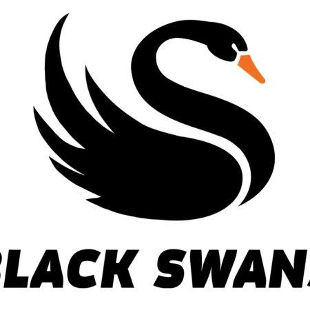BlackSwans.co.nz TorquePoint Ltd